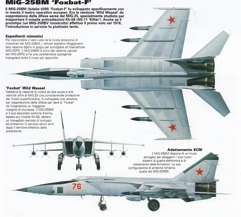 Mikoyan Gurevich MiG 25 Foxbat Cutaway Spaccato Profili